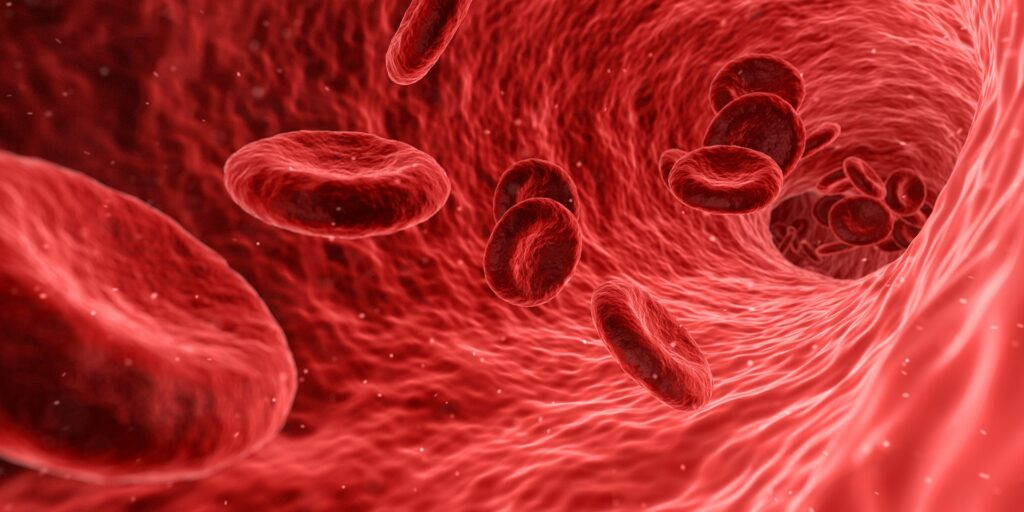 Red blood cells. CC0 Commons